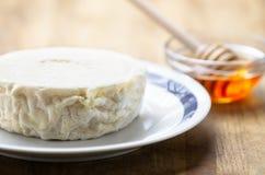Włoski świeży koźli ser Zdjęcie Stock