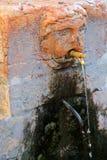 Włoski fontanny faucet w Verona, Włochy Obrazy Stock
