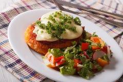 Włoski jedzenie: Kurczak Parmigiana i sałatki zamknięty up horyzontalny Zdjęcia Stock