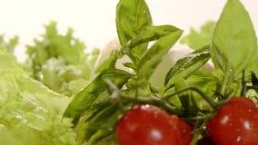 Włoski jedzenie, mozzarella zbiory