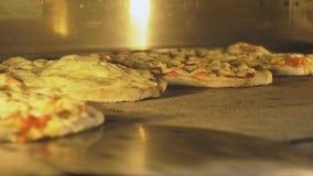 Włoski pizzy pieczenie w piekarniku zdjęcie wideo