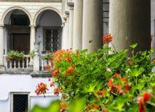 Włoski podwórze z kwiatami obraz royalty free
