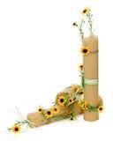 Włoski spaghetti dekorował z kwiatami odizolowywającymi zdjęcia royalty free