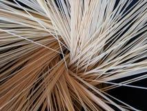 Włoski spaghetti makaronu kucharstwo W niecce Z Ciemnym tłem zdjęcia stock