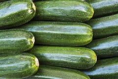 Włoski Zucchini z rzędu Obrazy Royalty Free