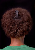 Włosy grępla Zdjęcie Stock
