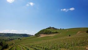 Włoszczyzn Krajobrazowi wzgórza w Costigliole d ` Asti, Włochy Zdjęcie Stock