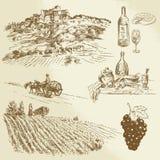 Włoszczyzna krajobraz, winnica ilustracja wektor
