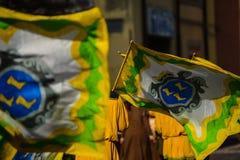 Włoszczyzny flaga ono waha się Obraz Royalty Free