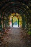 Wśrodku łuku z jesiennymi czasów lianes, lampionami i Fotografia Royalty Free