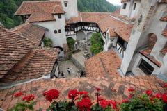 Wśrodku dworskiego widoku otręby kasztel od Rumunia, także znać jako Dracula kasztel obraz stock