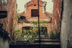 Wśrodku rujnującej, zaniechanej antycznej cegły, starzał się grodowego budynek przerastającego z trawą i roślinami obraz stock