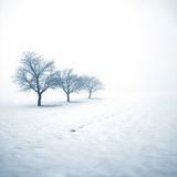 W śniegu zamarznięci drzewa Zdjęcie Royalty Free