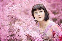 W średnim wieku kobieta w różowych kwiatach tamaricaceae Zdjęcia Royalty Free