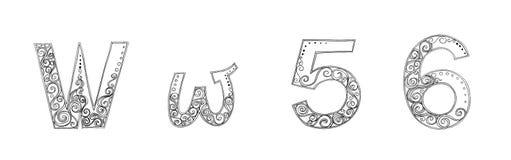 W 5 6万代兰属徒手画的铅笔剪影字体 库存照片