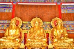 Władyka Buddha. obraz stock