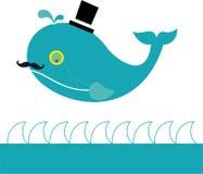 władyka wieloryb Zdjęcie Stock
