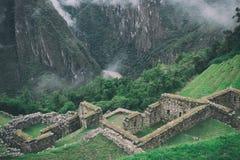 Władza natura od antycznej ruiny Fotografia Royalty Free