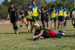 W akci rugby gracze Obraz Stock