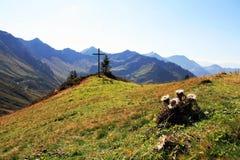 W Austria halny krajobraz Zdjęcie Stock