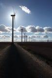W backligth wiatrowy gospodarstwo rolne obrazy stock