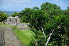 W Belize Majska Xunantunich Ruina Obraz Stock