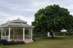 W budowie gazebo na pi?knym ogr?dzie Podw?rko widoki Bandungan wzg?rzy kurort na Semarang i hotel, Indonezja zdjęcia royalty free