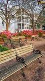 W centrum Charleston SC nabrzeża park Obraz Stock