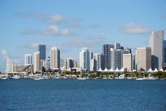 w centrum Miami Obraz Royalty Free