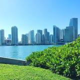 w centrum Miami Obrazy Stock