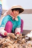 W Chiny kobieta pracownik Obrazy Stock
