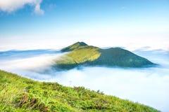 W Chmurach zielona Góra Obrazy Stock