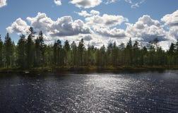 w chmurnych nieba lake lata lasu Szwecji Obrazy Royalty Free