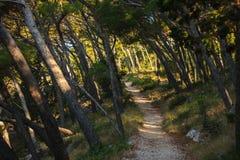 W Croatia piękny krajobraz obrazy stock