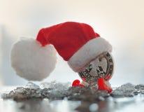 W czerwonej nakrętce nowego roku pieniądze Obraz Stock