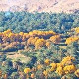 w dolinnym Morocco Africa atlant suchej góry zmielony isola Obrazy Royalty Free