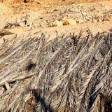 w dolinnym Morocco Africa atlant suchej góry zmielony isola Zdjęcie Stock