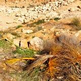 w dolinnym Morocco Africa atlant suchej góry zmielony isola Obraz Stock