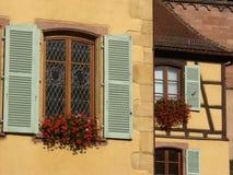 w domu alsacian wioska winnice Obrazy Royalty Free
