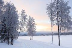 W Finlandia zima krajobraz Fotografia Stock