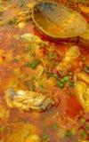 W górę świeżo robić hiszpańskiego kurczaka paella i drewnianej łyżki obrazy royalty free