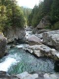 w górę świstunu creek Fotografia Royalty Free