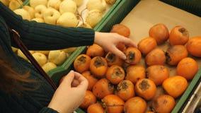 W górę żeńskiej ręki sprawdza persimmon zbiory wideo