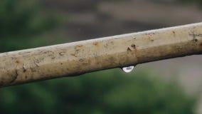W górę kropel wiesza od balkonowego poręcza w deszczu Pi?kny zamazany t?o zdjęcie wideo