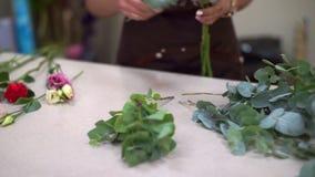 W górę, kwiaciarnia stół, mały biznes Dziewczyna zbiera pięknego bukiet zbiory wideo