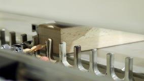 W górę maszyny z musztruje dla musztrować drewniane deski akcja Nowożytna automatyzująca maszyna dla musztrować drewniani bary zdjęcie wideo