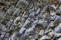 W górę naturalnego siwieje płatowatego halnego trakenu jako tło obrazy stock