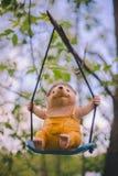 W górę ogrodowego figurka wystroju wiesza na gałąź - rozochocony jeż siedzi na huśtawce w kolorów żółtych ubraniach - zdjęcie stock