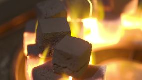 W górę płonących węgli drzewnych sześcianów akcja Sześciany embers pali w pucharze dla dymić nargile Spalanie mały zbiory