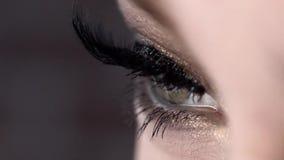 W górę pięknego żeńskiego oka z długimi czarnymi batami akcja Krańcowa długość rzęsy, super czarny i wirujący dalej zdjęcie wideo